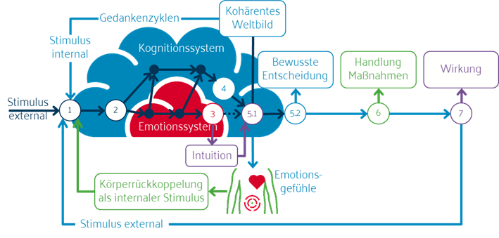 Abbildung: Die Untrennbarkeit von Emotionen, Intuition und Kognition