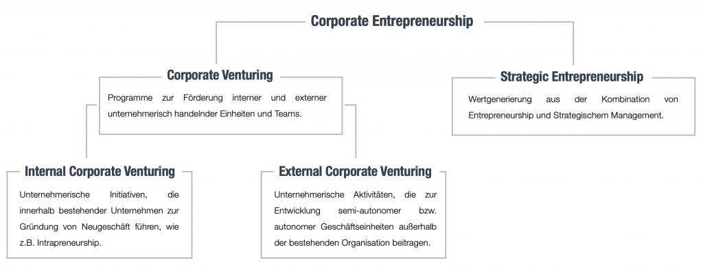 CE-Felder - Corporate Entrepreneurship